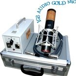 IGS Audio Gold Mic